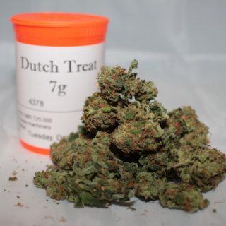 Buy Dutch Treat Marijuana Strain