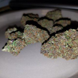 Buy Jager Marijuana UK