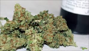 Buy Chi Haze Weed Online