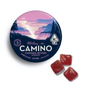 Camino Wild Berry Chill UK Gummies - 100mg